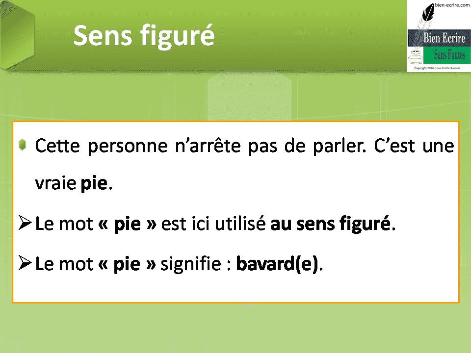 Cette personne n'arrête pas de parler. C'est une vraie pie.  Le mot « pie» est ici utilisé au sens figuré.  Le mot «pie» signifie : bavard(e).